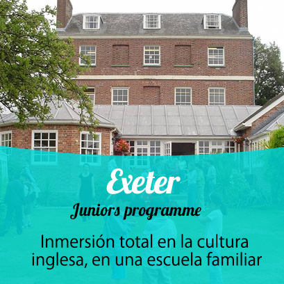 Exeter International Programme