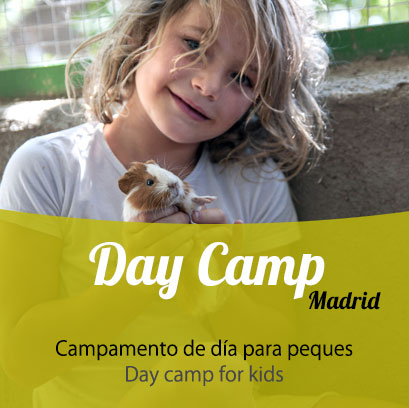 Cuarta Semana Day Camp