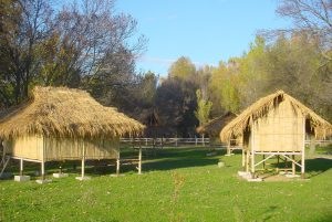 Programa escolar intercultural poblado Akhá